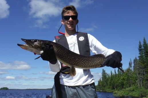 pêche brochet réservoir Gouin